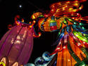 Chinese Lantern Festival, 3 entries